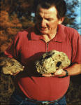Rex holding Two Fossil Skulls