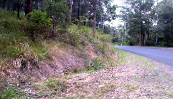 section of embankment where Faye and Alana encountered a Yowie