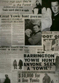 Yowie Newspaper Articles Collage
