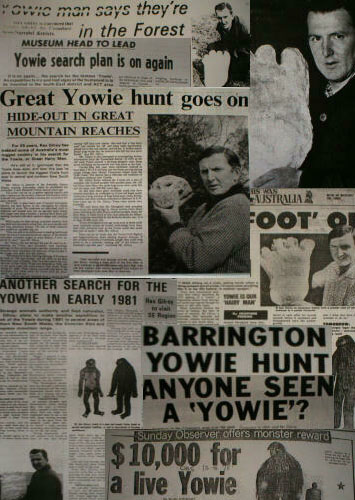 Yowie Newspaper Articles